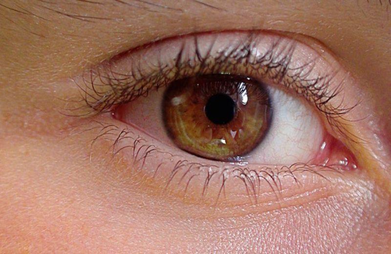 Storia dell'iridologia