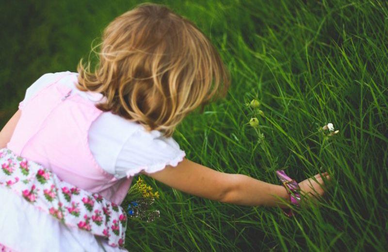 I bambini imparano a riconoscere le erbe