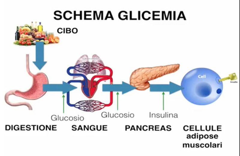 Glicemia: esperimenti e prove nel My Lab Experiment