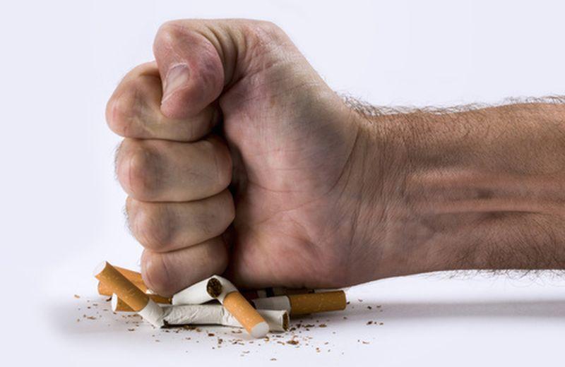 Fumo di sigaretta e Moringa oleifera: cosa hanno in comune?