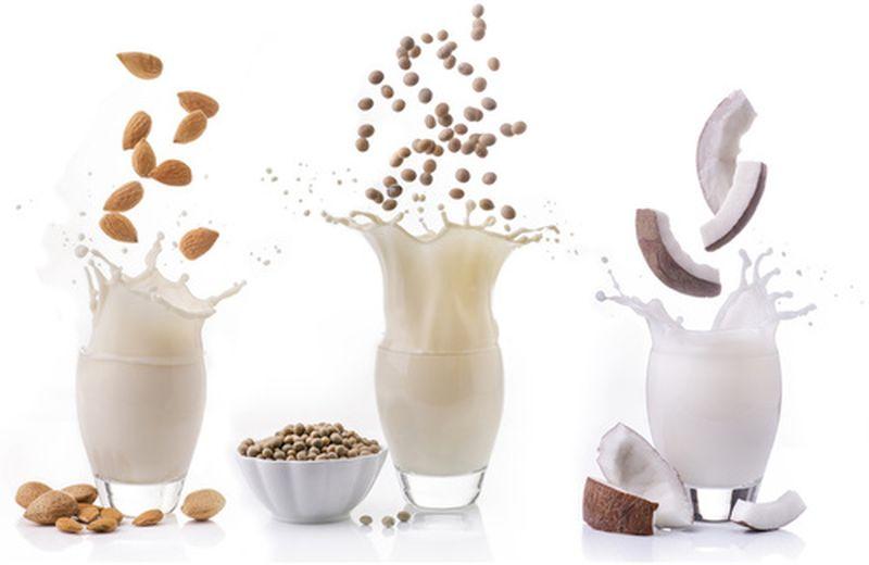 Tipi di latte vegetale: un libro per saperne di più