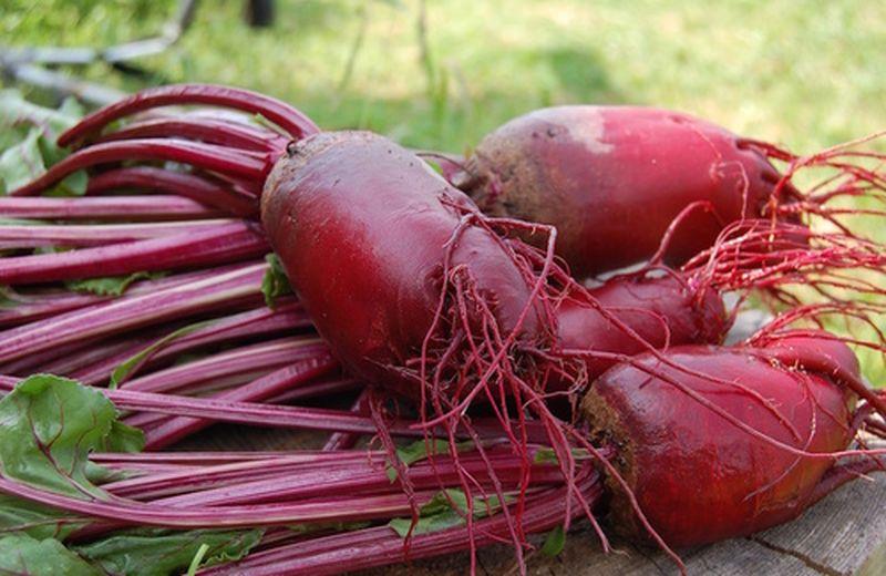 Barbabietola rossa: 3 ricette vegetariane