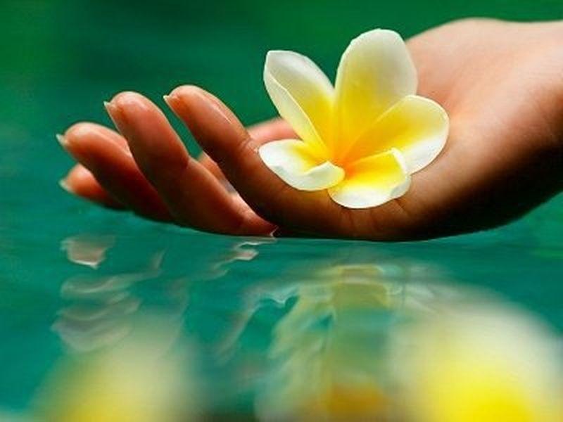 Floriterapia e ruolo delle emozioni positive