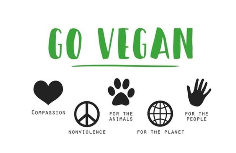 Plant Based o Vegan? Ecco le differenze