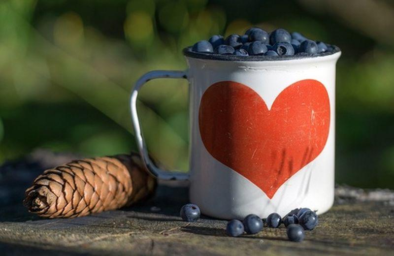 I 10 migliori alimenti per il sistema cardiocircolatorio