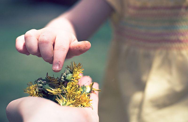 Diventare floriterapeuta: l'autoterapia e la salute nel fiore