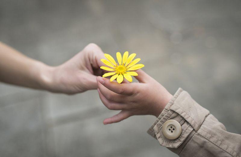Celebriamo la gentilezza