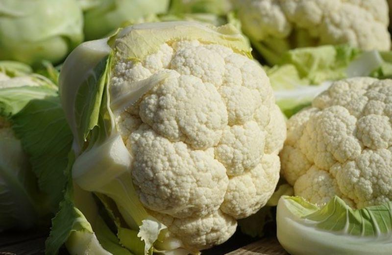 Il cavolfiore nelle ricette vegan