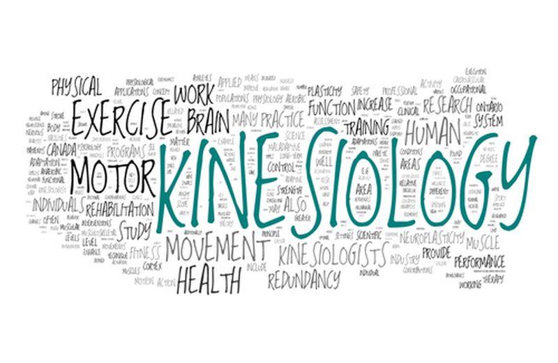 Test kinesiologico: come funziona e a cosa serve?