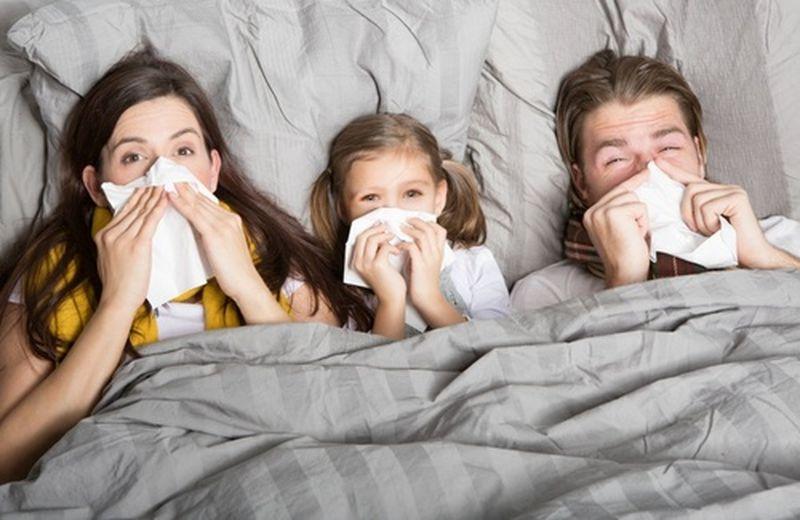 Tisane per la febbre