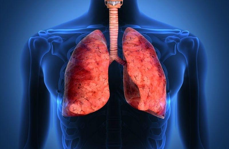 I 10 migliori alimenti per i polmoni