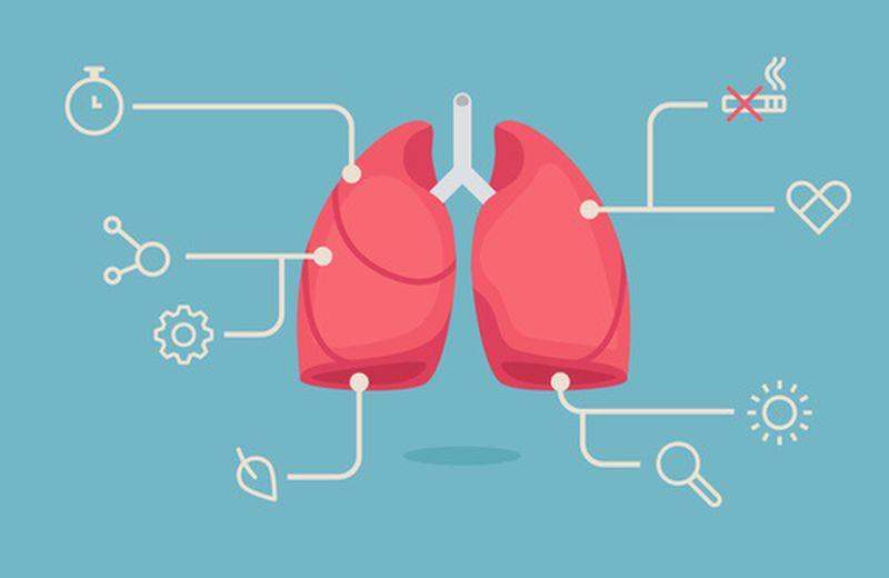 I 10 migliori alimenti per l'apparato respiratorio