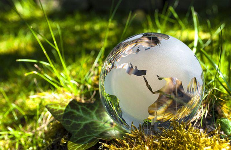Come salvare il pianeta: esempi virtuosi in Italia