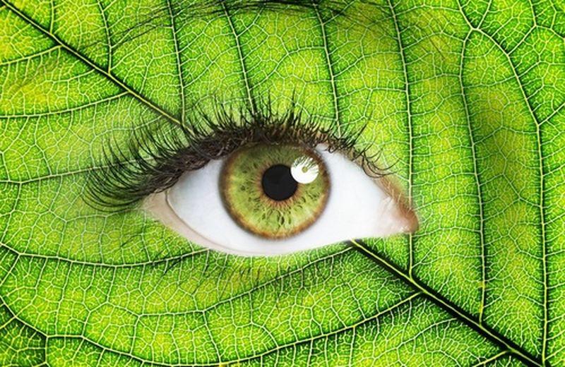 integrazione alimentare per la salute degli occhi - cure-naturali.it