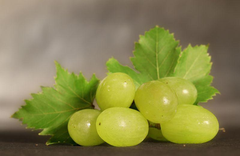Uva bianca, caratteristiche e proprietà