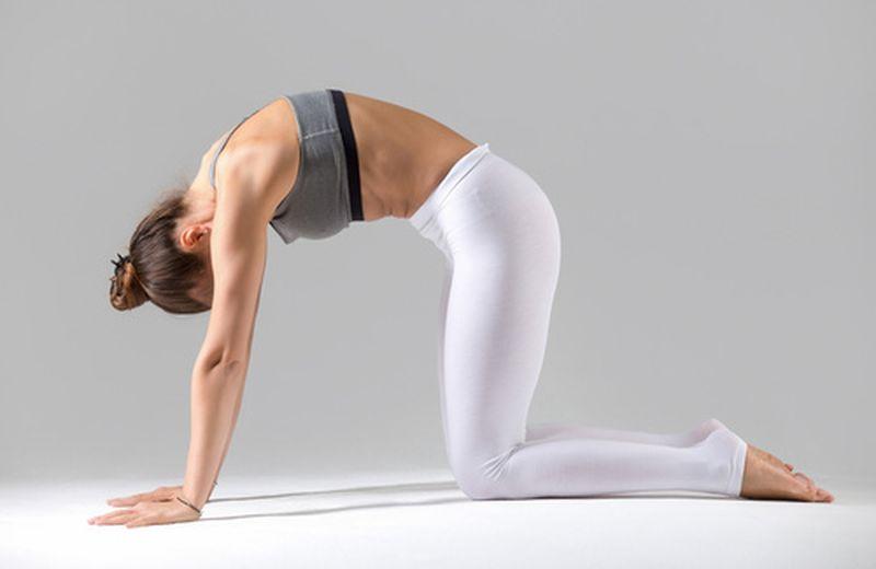 Riabilitazione del pavimento pelvico: come eseguirla correttamente