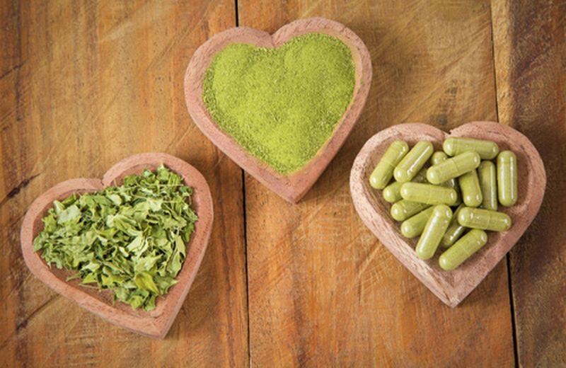 Moringa oleifera: un supporto nella lotta al cancro?