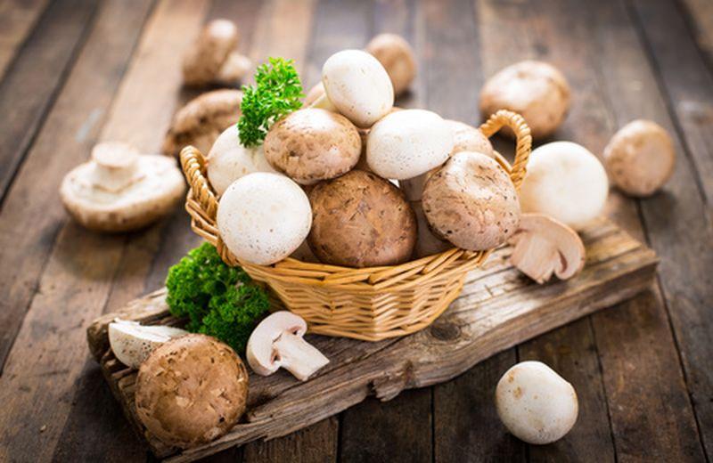 Funghi, le proprietà di un alimento rimineralizzante