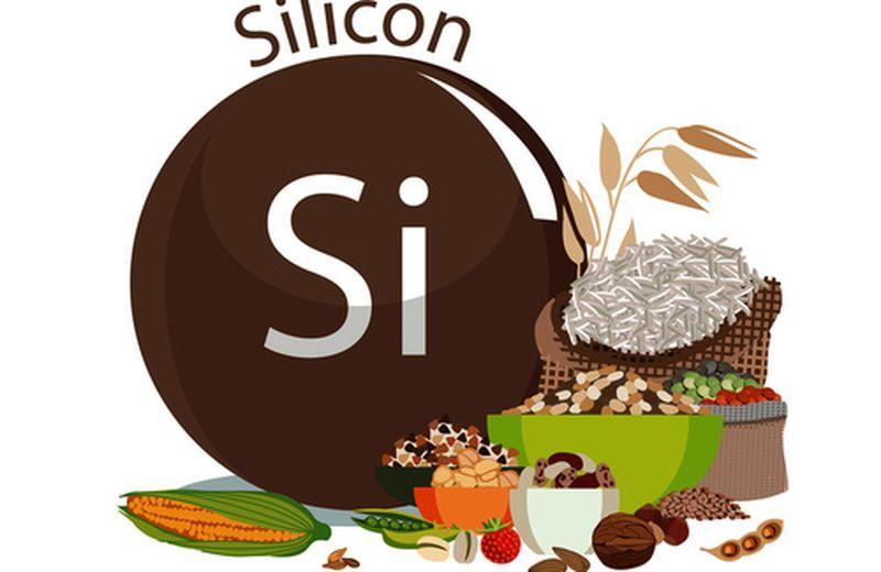 Alimenti ricchi di silicio