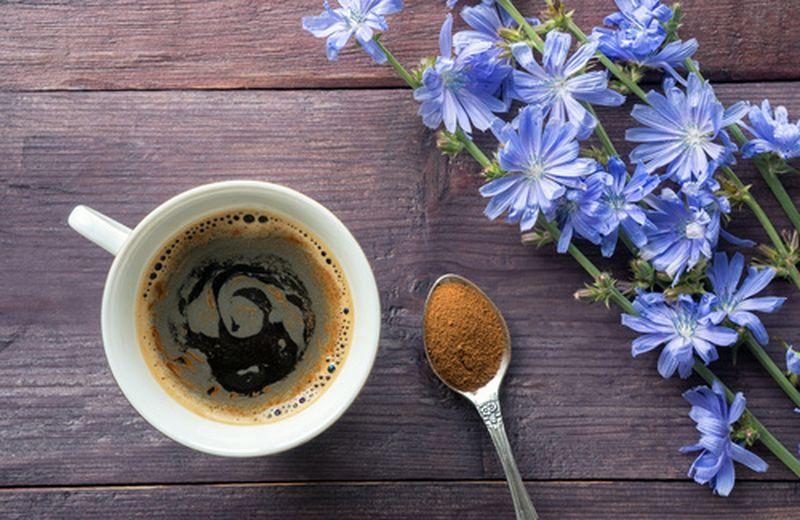 Caffè di cicoria, la ricetta