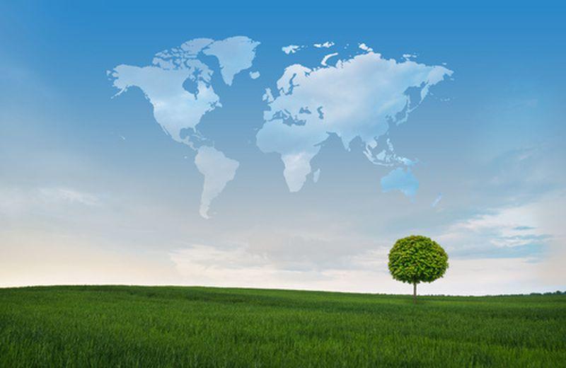 5 Giugno, la Giornata dell'ambiente