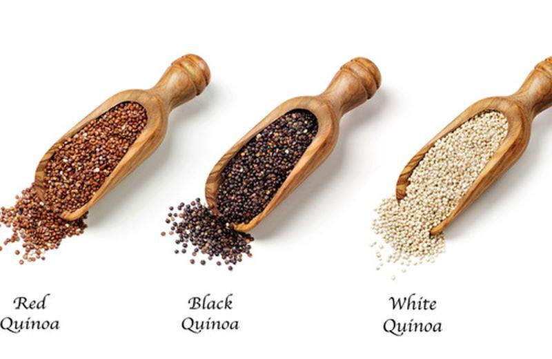 6 ricette con la quinoa