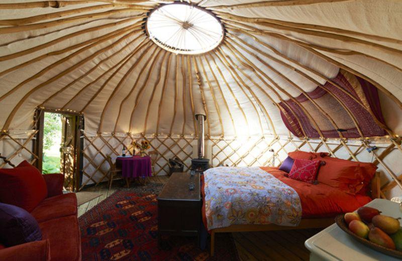 Yurta, l'abitazione ecologica