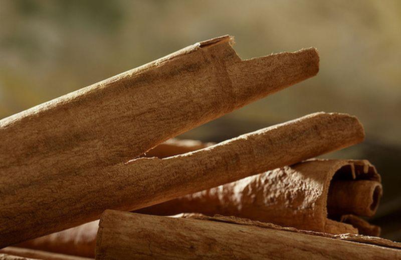 La cannella: l'aroma che riscalda il cuore