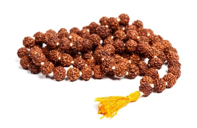 Rudraksha, il mala curativo
