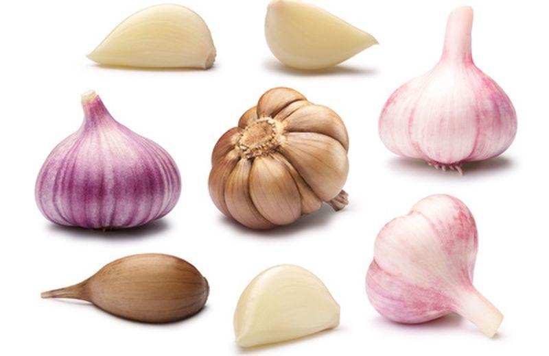 Varietà di aglio e ricette