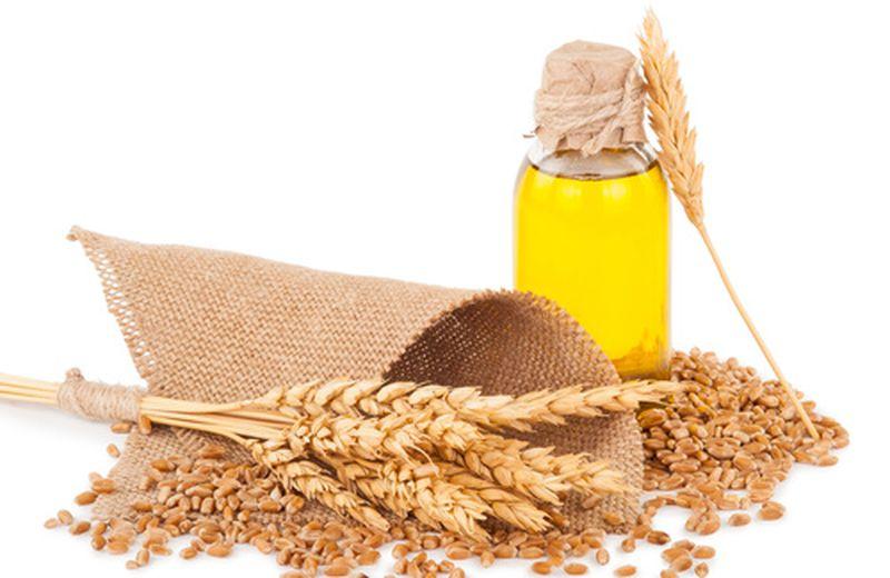 Olio di germe di grano per la bellezza dei capelli