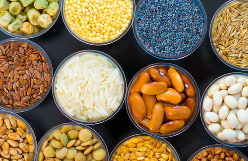 Proteine vegetali, come integrarle nella dieta