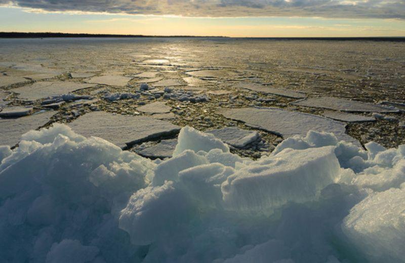 Scioglimento dei ghiacci, cosa dicono gli scienziati