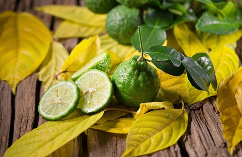 Bergamotto: origini, proprietà e coltivazione