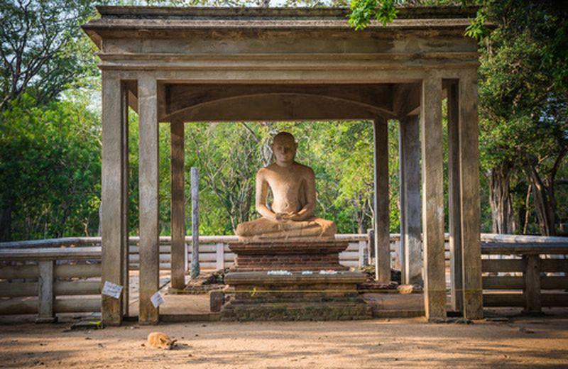 Yoga: cos'è il Samadhi
