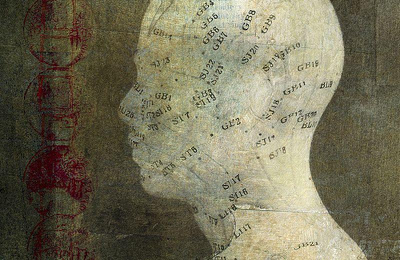 La mappa dell'agopuntura