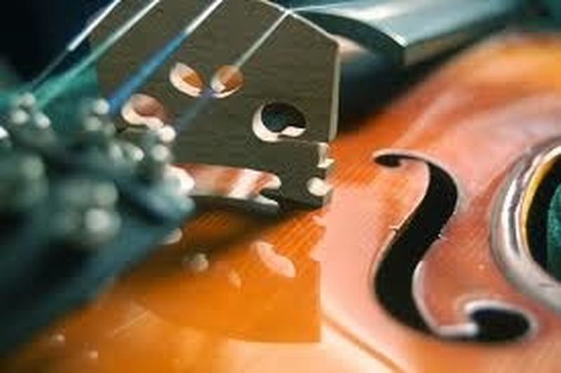 Sollima e la terapia in musica