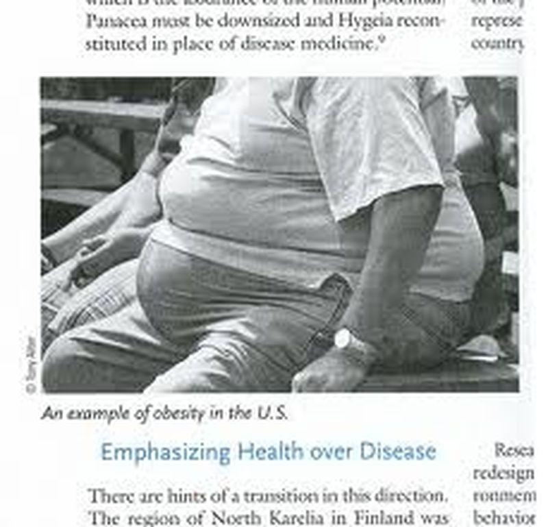 L'obesità e la salute dell'intestino
