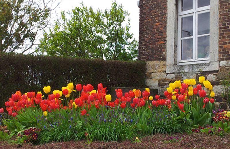 Il giardinaggio terapeutico