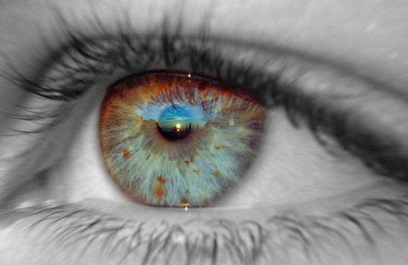 L'iridologia e il lavoro dell'iridologo