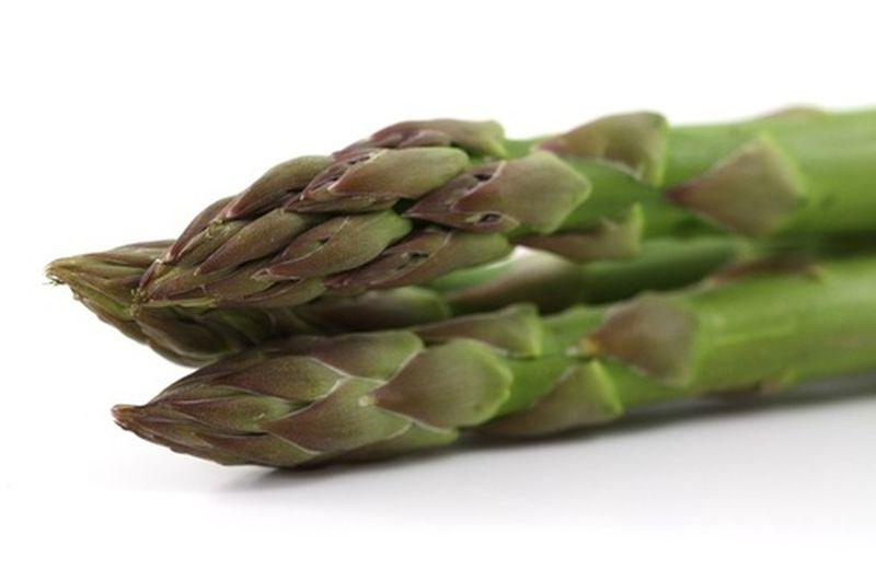 La verdura della primavera